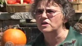 Diane Eggert